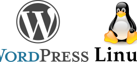 מעבר חברת אחסון אתרים – אחסון וורדפרס